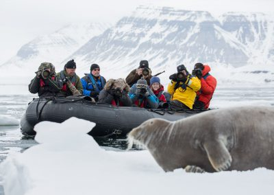 Close encounters in Svalbard