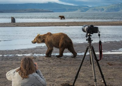 Every wildlife photographers dream in Kamchatka, Russia